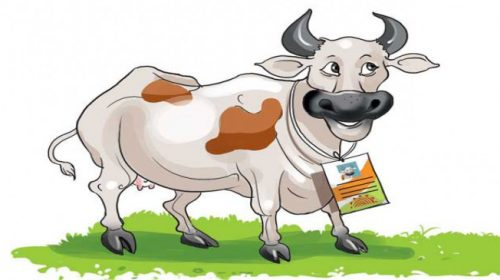 now,-even-the-animals-identity-will-be-linked-to-owner's-aadhar-card