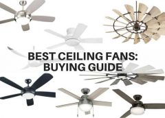Budgeted ceiling Fans-Beat the Heat with these Top Ceiling Fan Brands
